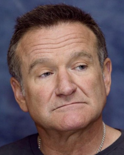 Robin Williams, Observer from Ork